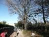 14-rando-maureillas-arrivee-08-01-2012