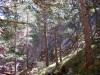 029-la-pedrera-de-terra-fumada