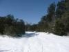 006-paysage-de-neige