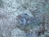 21-roc-de-frausa-15-01-2012